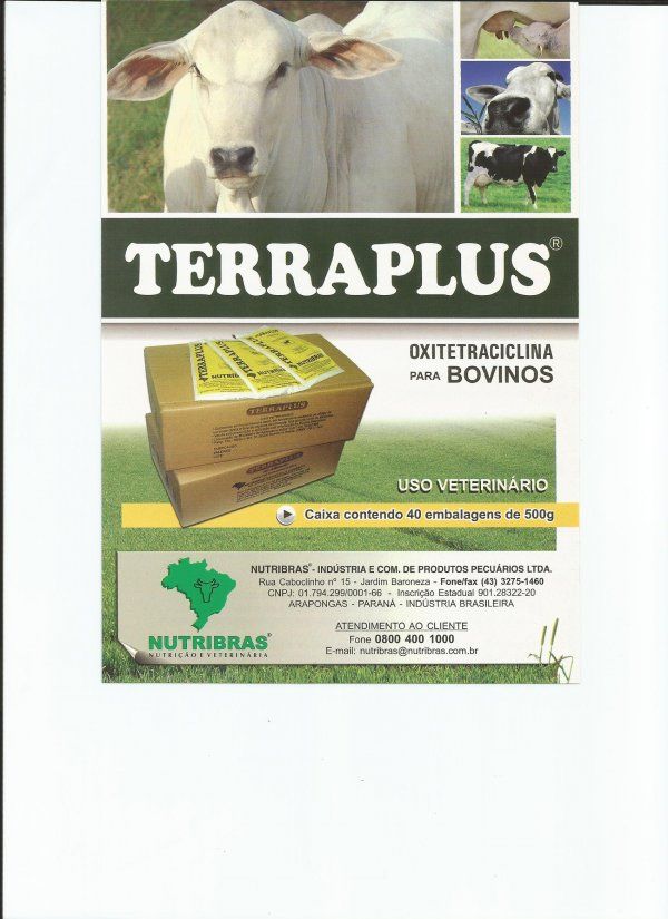 TERRAPLUS - DIARRE�AS