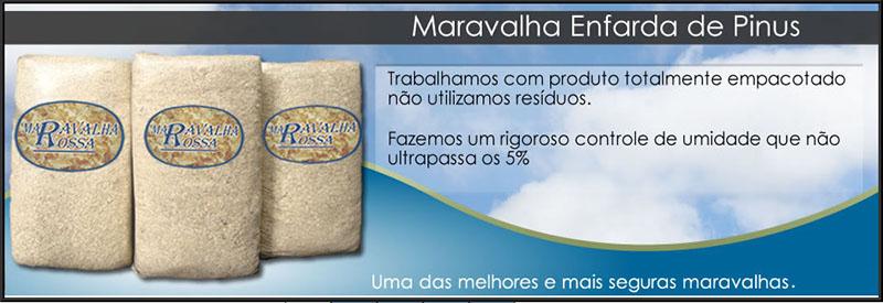 MARAVALHA ROSSA
