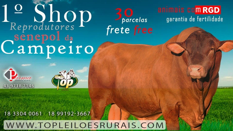 Venda de SHOP SENEPOL 30 PARCELAS