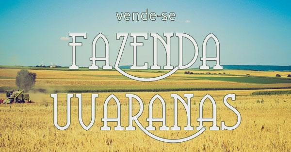 FAZENDA EM TIBAGI-PENHA