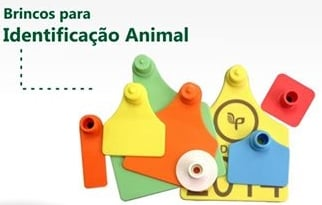 BRINCOS DE ANIMAIS