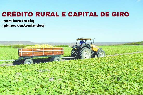 CR�DITO RURAL E CAPITAL