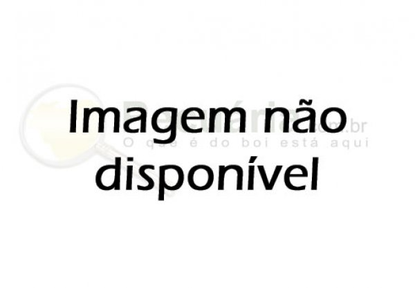 LIMPE O SEU NOME
