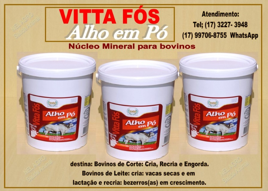 Venda de VITTA FÓS ALHO/ KIT 4X1