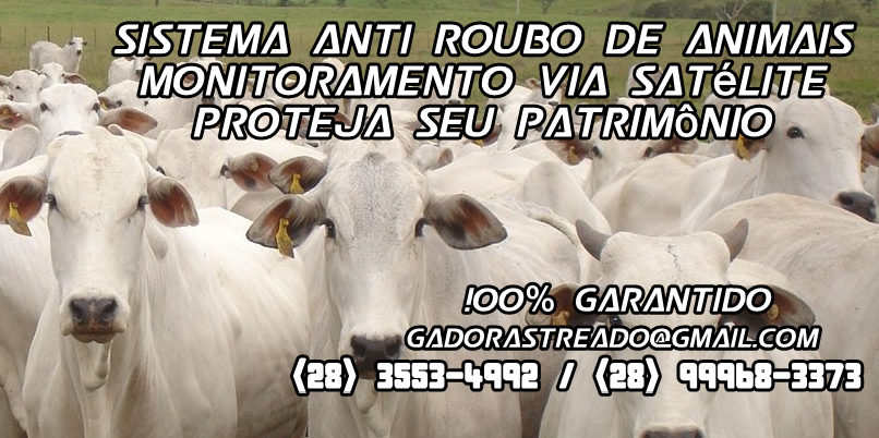 Venda de GADO RASTREADO - ANTI RO