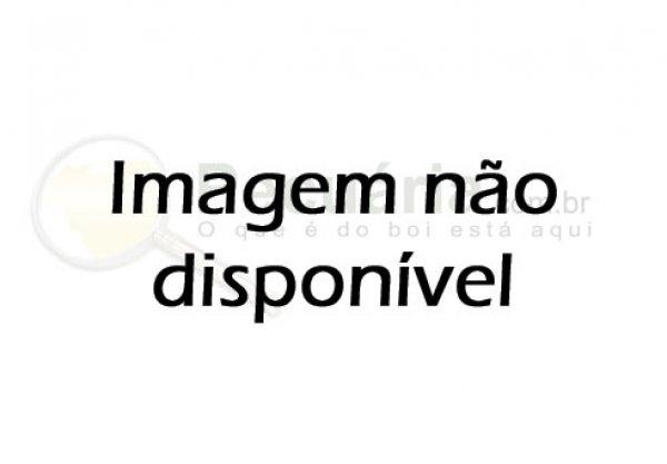 BAGAÇO DE LARANJA