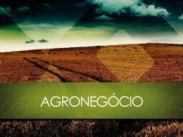 CRÉDITO RURAL / AGRO...