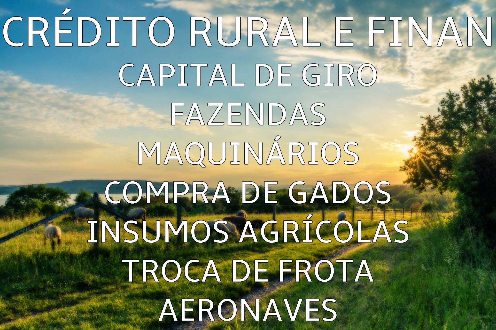 CRÉDITO RURAL E FINAN