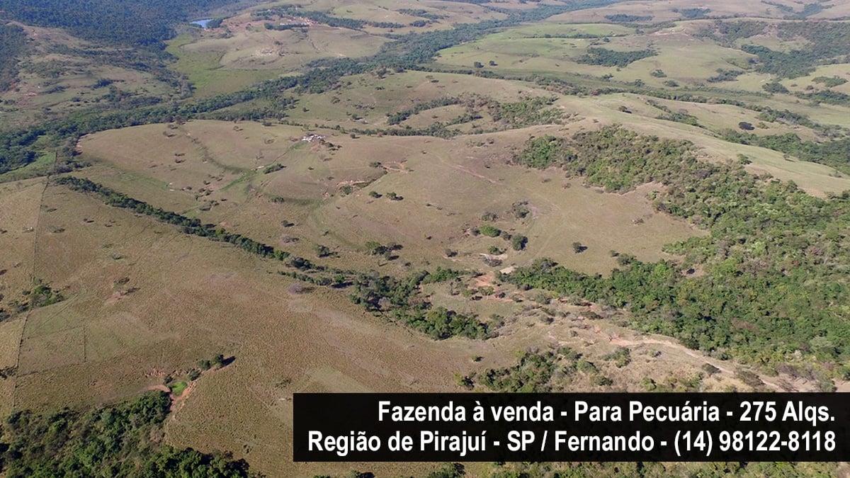 PIRAJUÍ/SP-275 ALQUEIRES