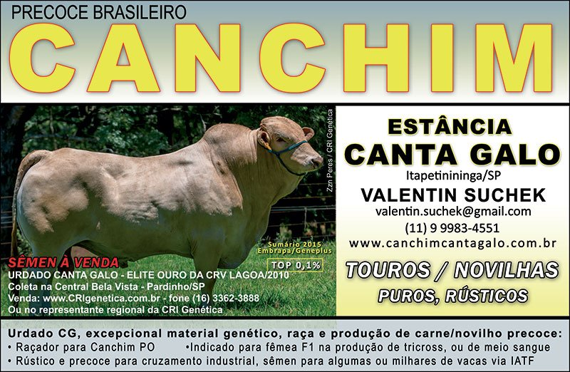 Venda de CANCHIM - TOUROS E S�MEN