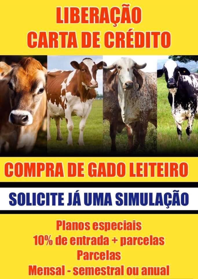 CRÉDITO PARA GADO