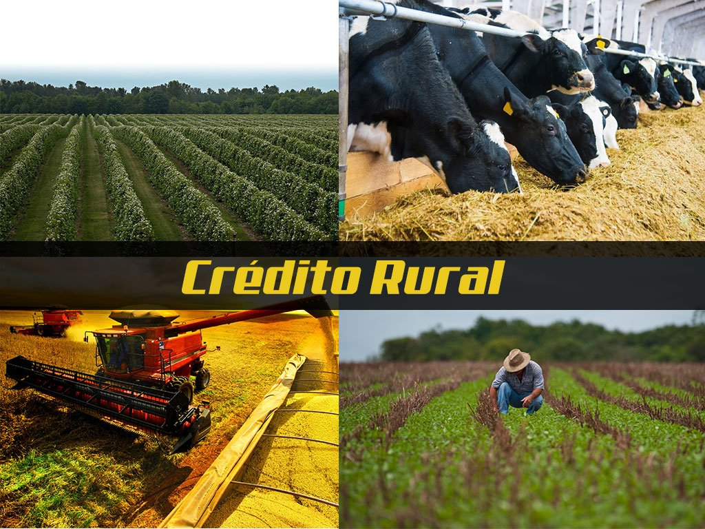 CRÉDITO RURAL E CAPITAL