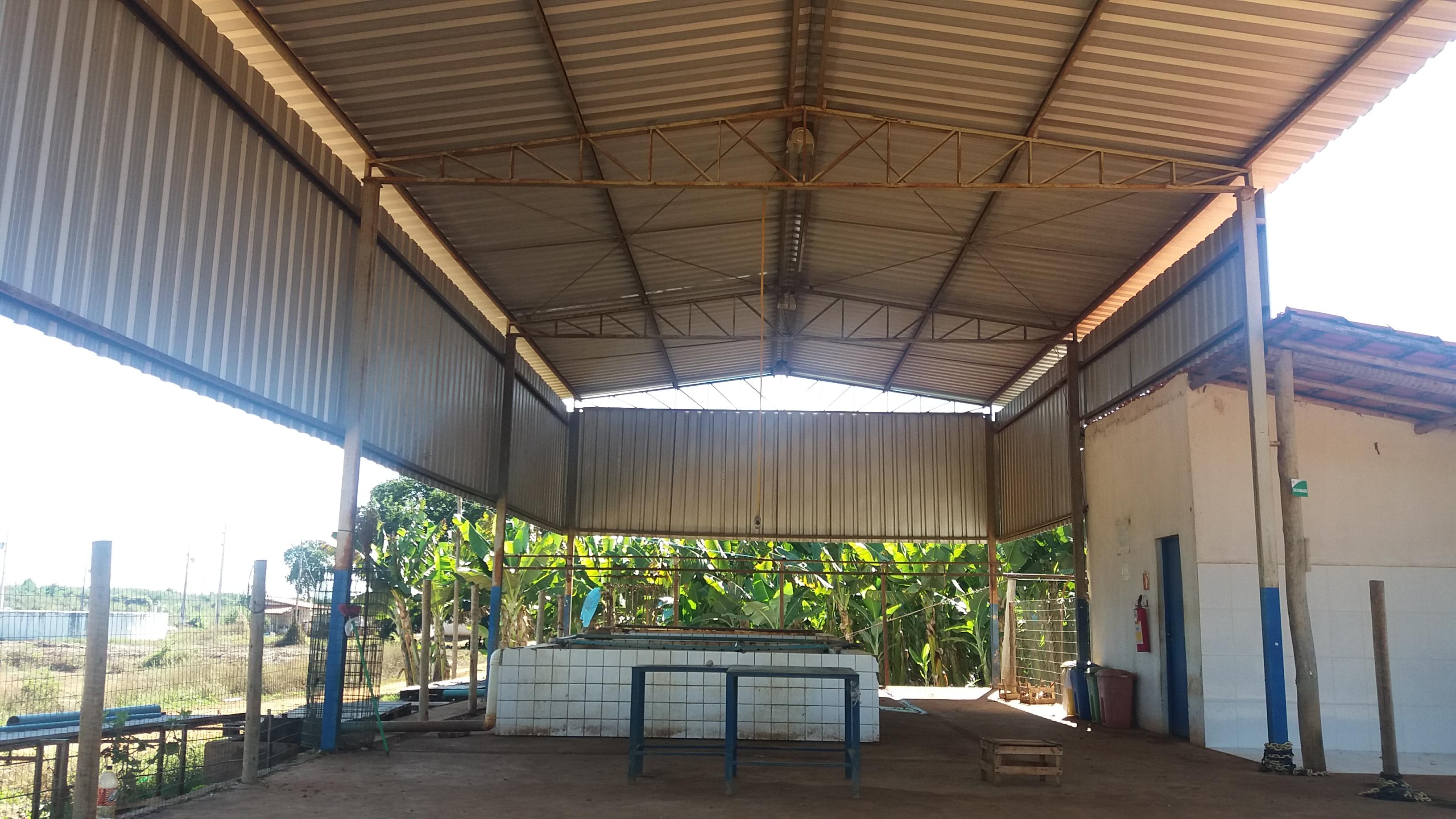 Venda de ÁREA C/ PLANTIO DE BANANA